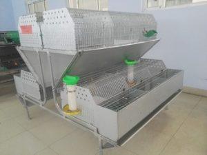 Jaula industrial para conejo