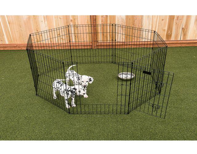 Amazon jaulas para perros