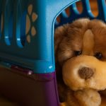 jaulas para perros baratas